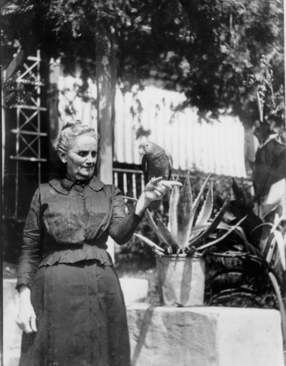 ms orig rodney maggie burkley c 1900.jpg